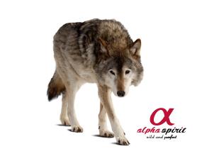 Alpha Spirit Wolf