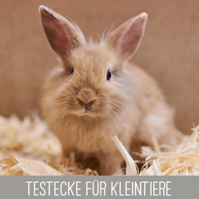 Testecke mit Proben für Kleintiere