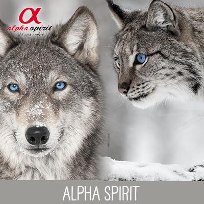 Markenwelt Alpha Spirit