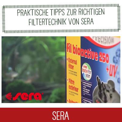 SERA Video