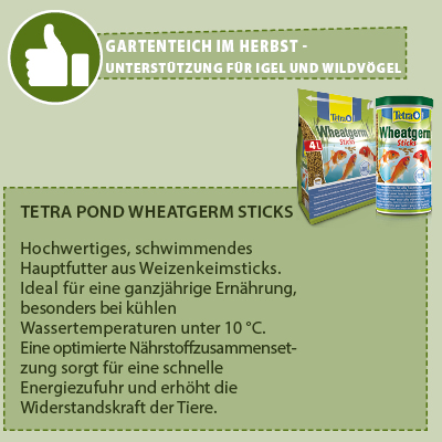 Tetra Pond Wheatgerm Sticks