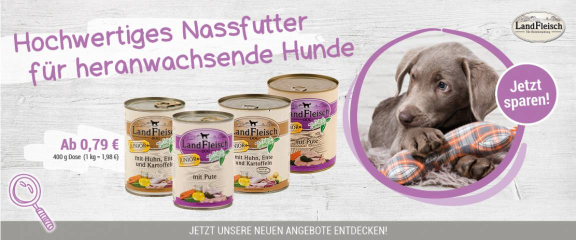LandFleisch Dog Junior