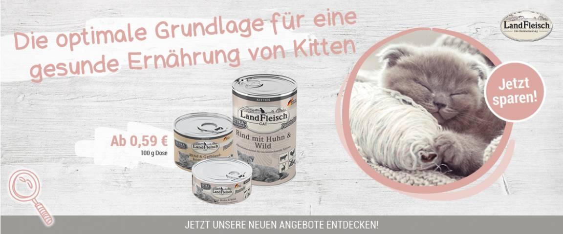 LandFleisch Cat Kitten