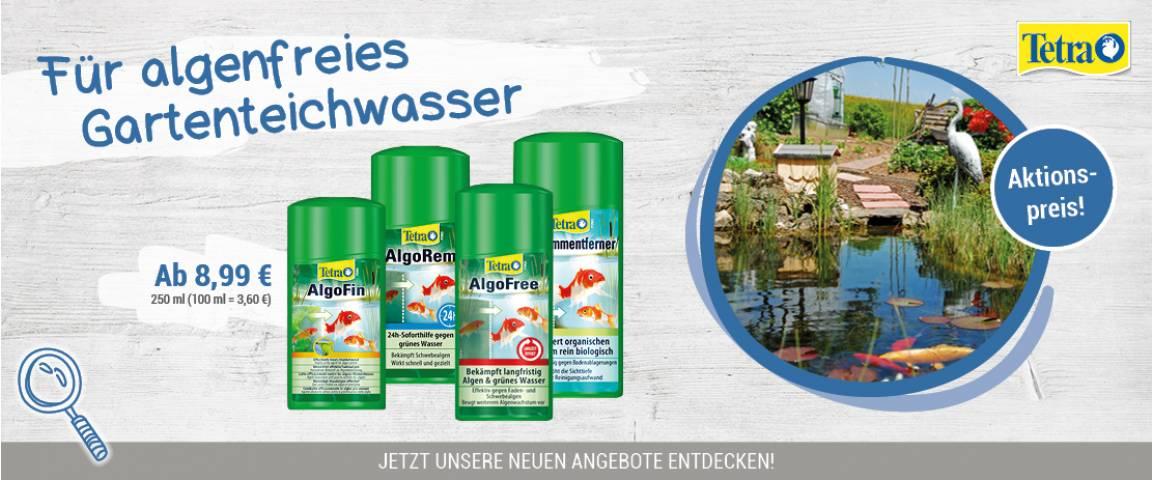 Tetra Sauberer Gartenteich (Anti-Alge + Pflege)