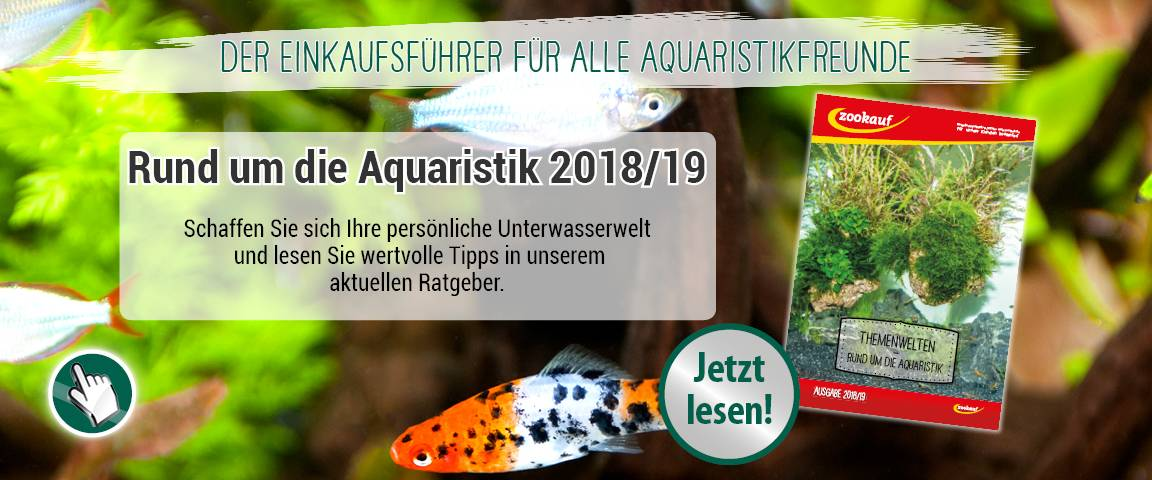 Themenkatalog Aqua