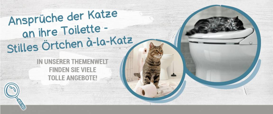 Cat Okay Katzenstreu