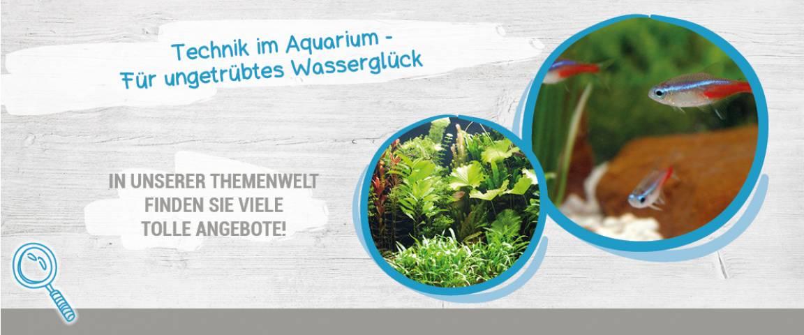 Tetra Technik im Aquarium