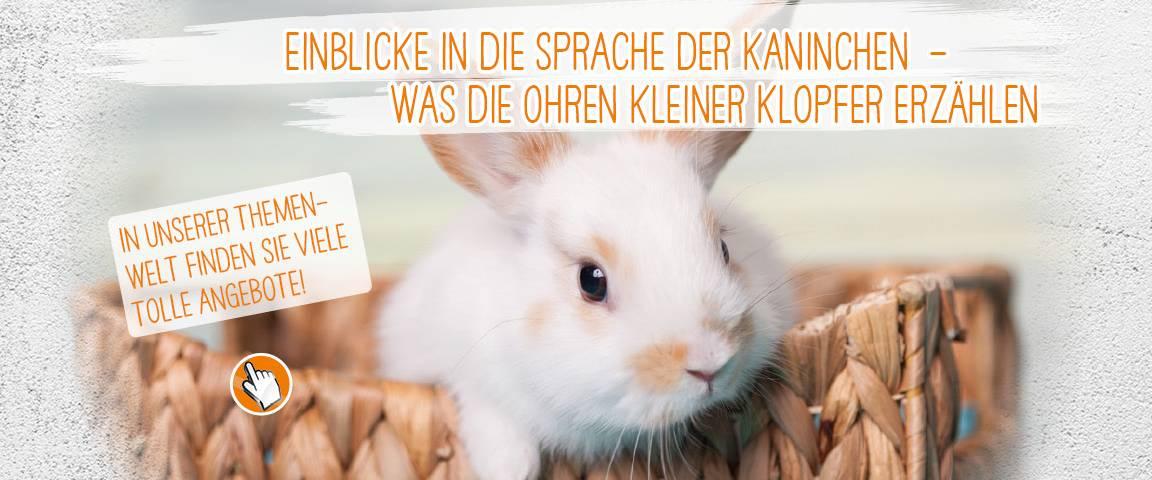 zookauf Kaninchenfutter - 10 % Rabatt