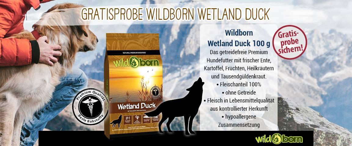 Markenwelt Wildborn