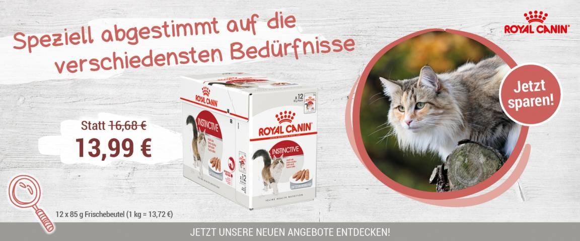ROYAL CANIN Katze PB 12 x 85 g