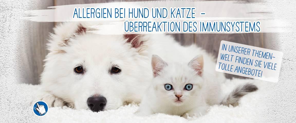LandFleisch Dog Hypoallergen 400 g - Dose - 10 % Aktionsrabatt