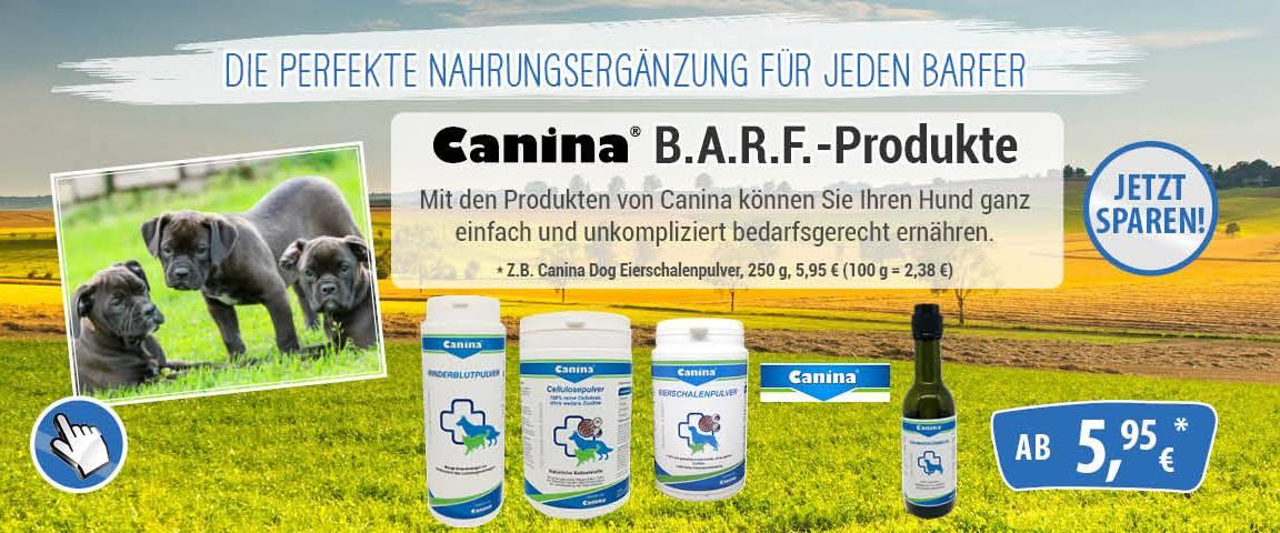 Canina- 10 % Rabatt