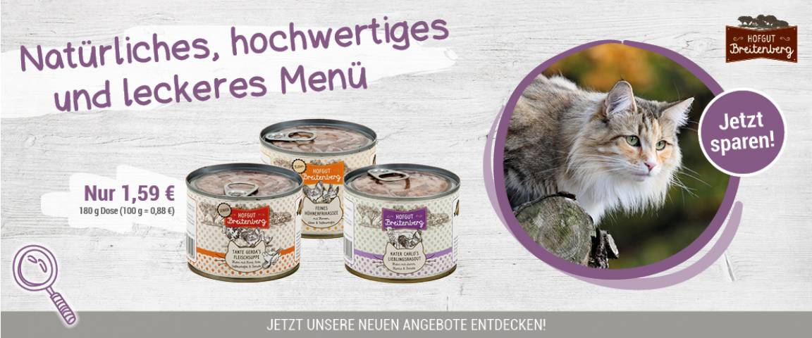 Hofgut Breitenberg Cat