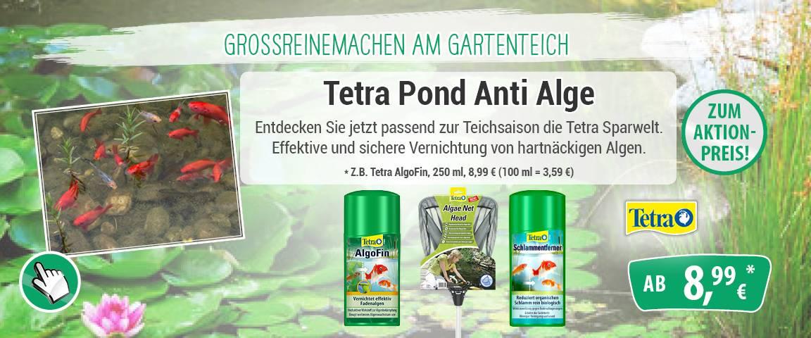 Tetra Pond Anti Alge - 17 % Rabatt