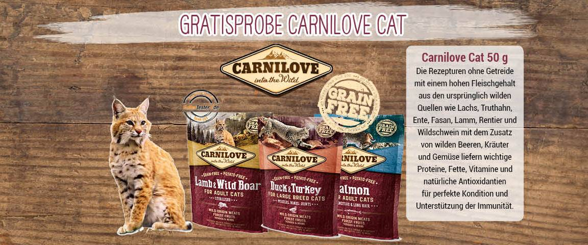 Sampling Carnilove Cat