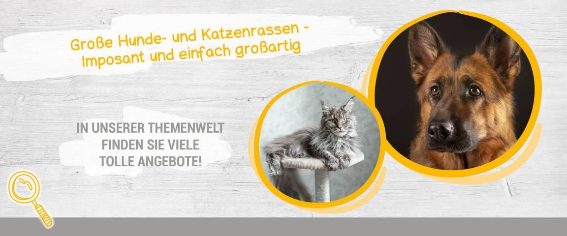 Applaws Cat Trockenfutter 7,5 kg