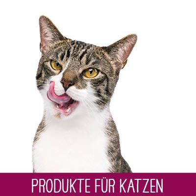 Dokas Produkte für Katzen
