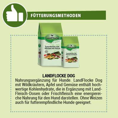 LandFlocke Dog Nahrungsergänzung für Hunde