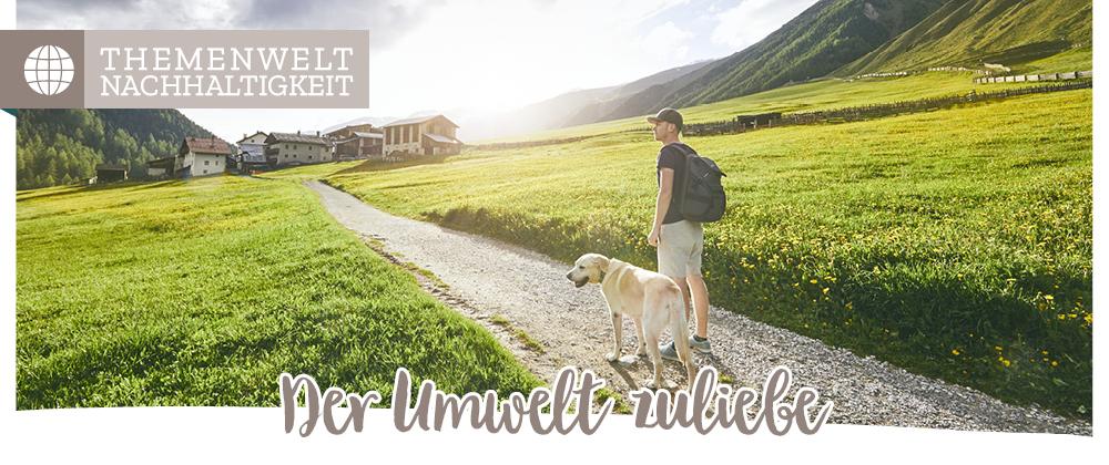 Nachhaltige Produkte für den Hund