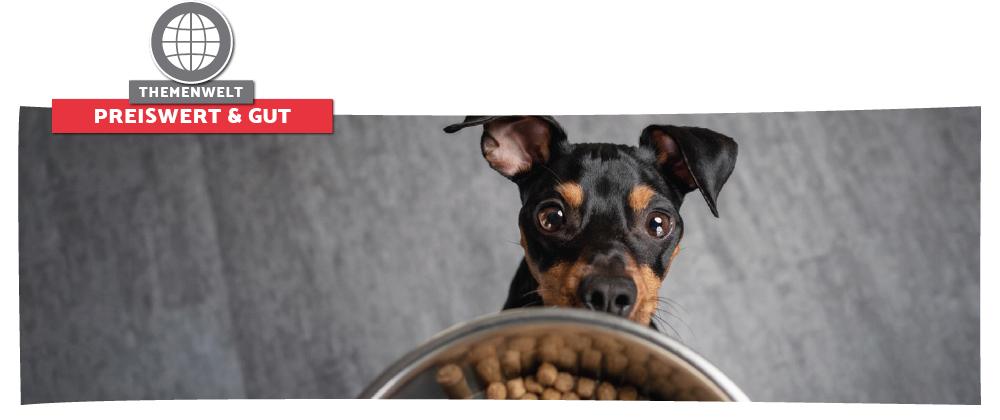 Günstiges Hundefutter mit Top-Qualität