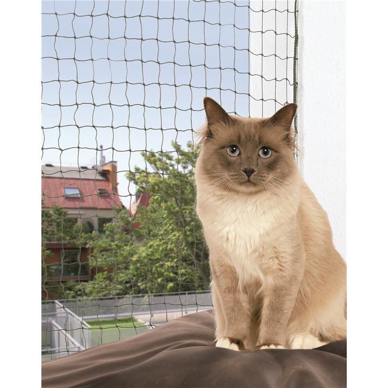 Charmant Katze 5 Draht Bestellung Fotos - Elektrische ...