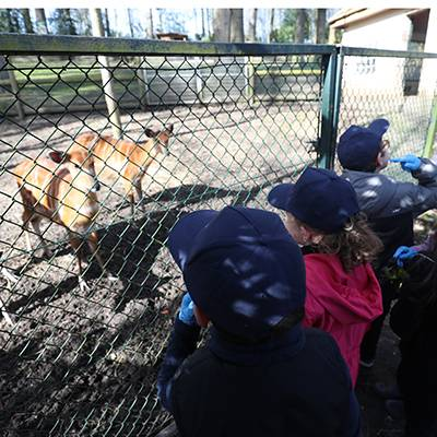 Graine de Soigneur - ZooParc de Beauval