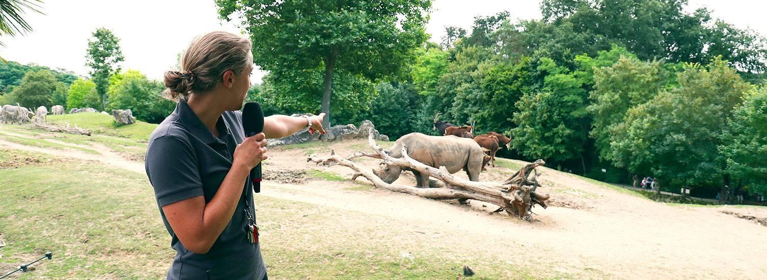 Animations et nourrissages - ZooParc de Beauval