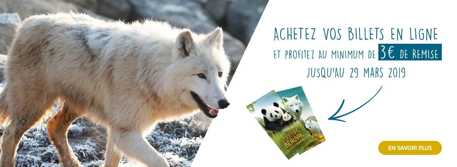 Billetterie 3 euros de remise - ZooParc de Beauval