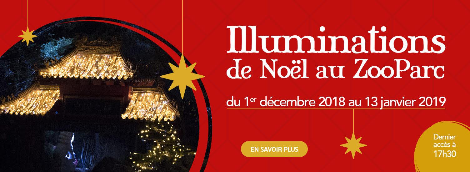 Illuminations de noël - ZooParc de Beauval
