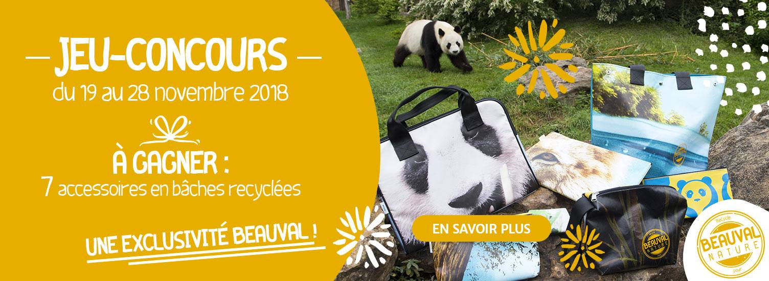 Jeu Billum - ZooParc de Beauval