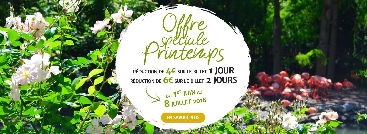 Offre spéciale printemps - Billetterie - ZooParc de Beauval