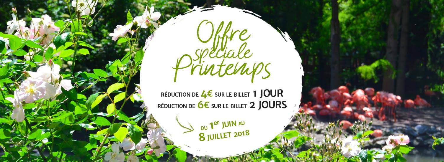 Billetterie - Promo printemps 2018 - ZooParc de Beauval