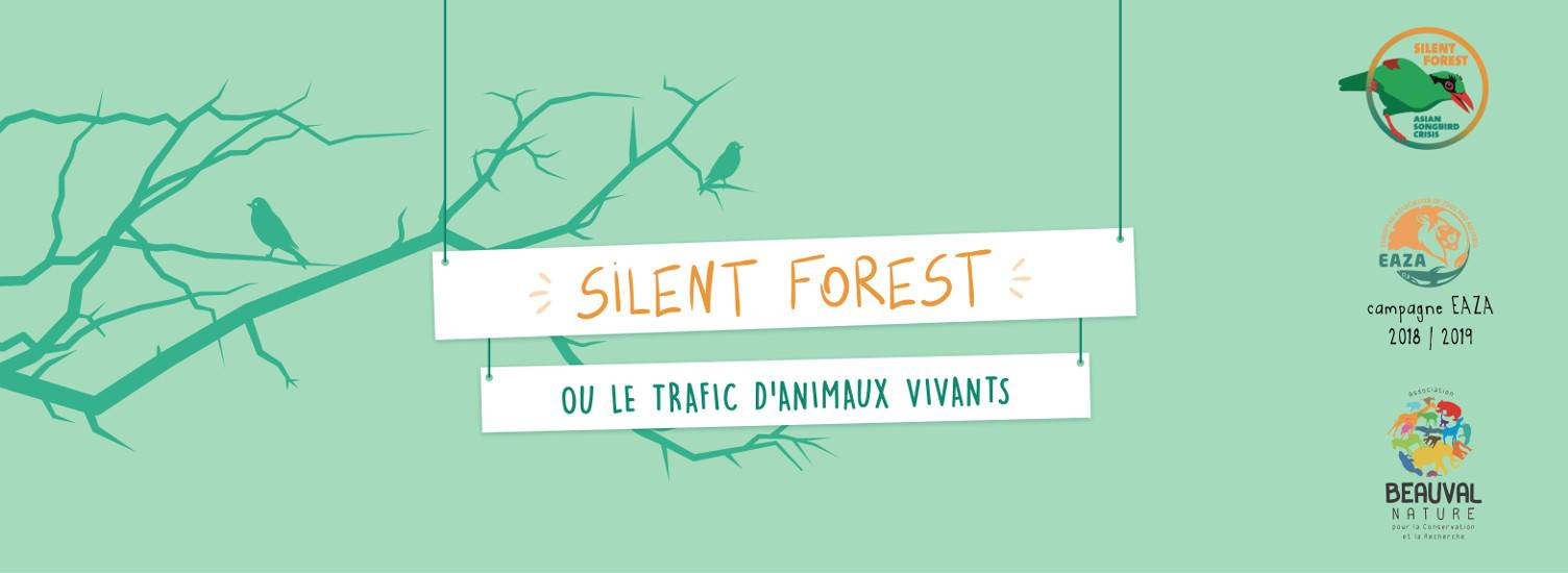 Silent forest - EAZA 2017-2019 - ZooParc de Beauval