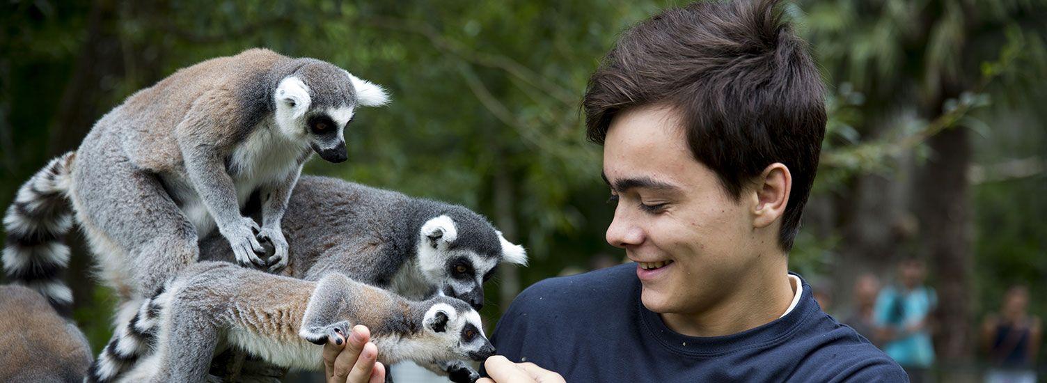 Soigneur d'un Jour - Activités pour les adultes - ZooParc de Beauval