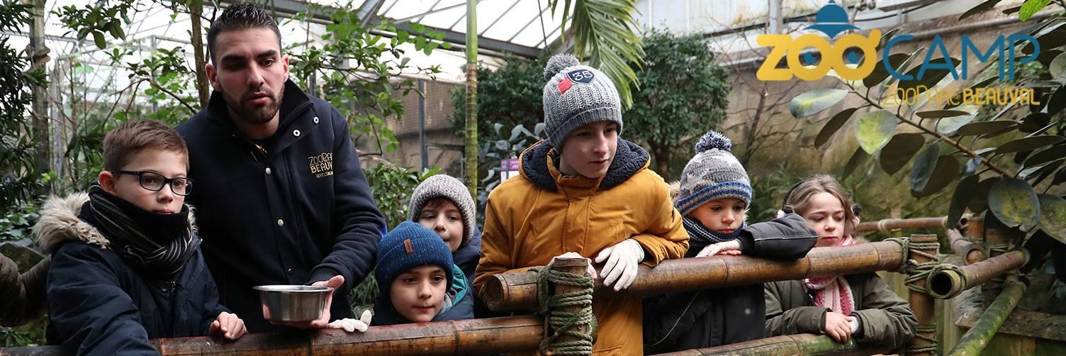 Zoo'Camp - Activités pour les enfants - ZooParc de Beauval