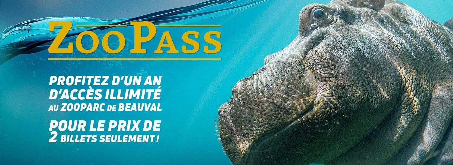ZooPass 1 an - ZooParc de Beauval