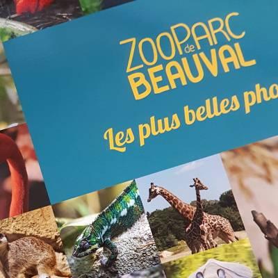 Les livres de Beauval - ZooParc de Beauval