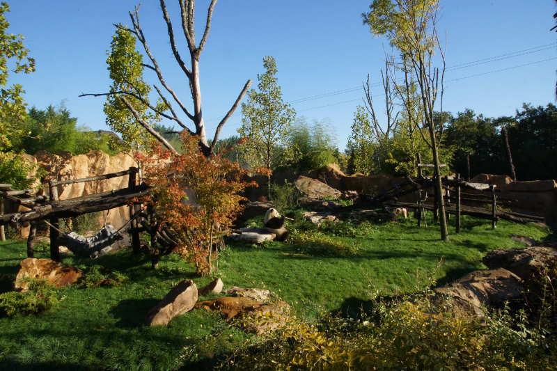 En 2011, « Sur les Hauteurs de Chine » à Beauval ! - ZooParc de Beauval