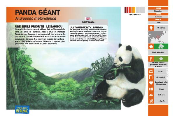 Pancarte Panda géant - ZooParc de Beauval