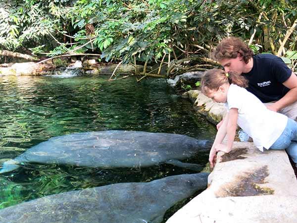 Activité Soigneur Junior - ZooParc de Beauval