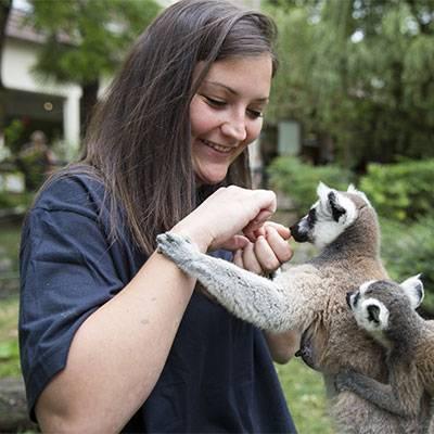 Activité Soigneur d'un Jour - ZooParc de Beauval