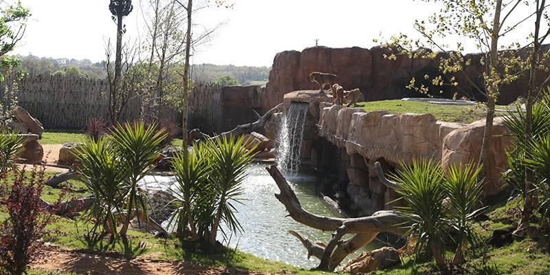 Un des 10 plus beaux zoos du monde