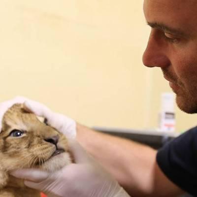 TF1 Vétérinaires - ZooParc de Beauval