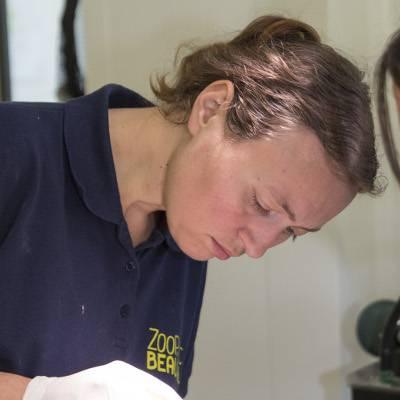 Amélie - Vétérinaire - ZooParc de Beauval