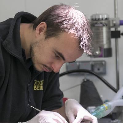 Nicolas - Vétérinaire - ZooParc de Beauval