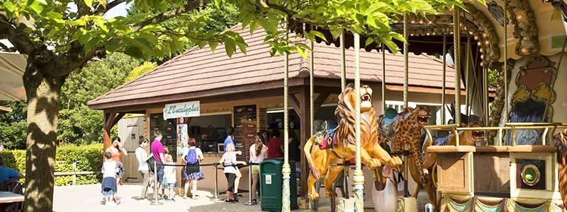 L'Eucalyptus - Restauration - ZooParc de Beauval
