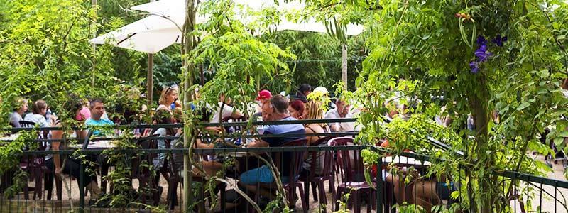 La Roseraie - Restauration - ZooParc de Beauval